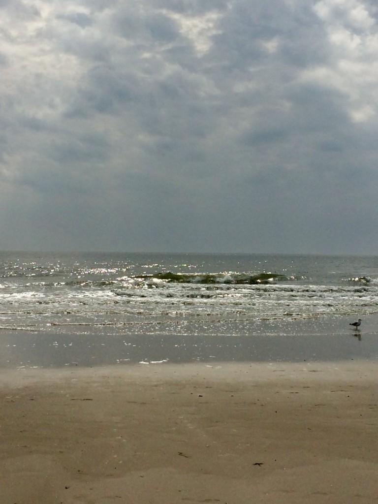 Amrum Nordsee Insel Urlaub Strand