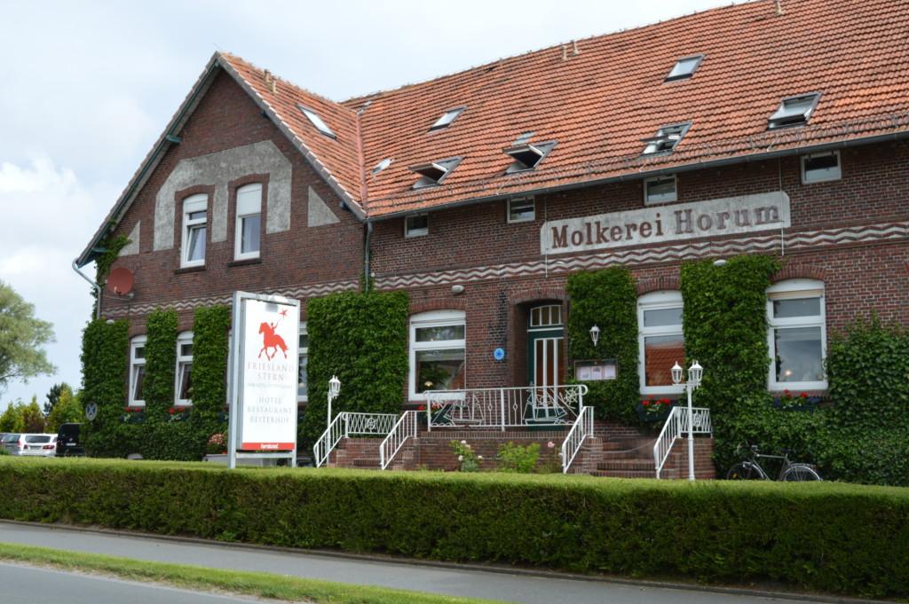Nordsee Niedersachsen Familotel Friesland-Stern Haflinger Friesen Wangerland Horum Familienurlaub Reiten