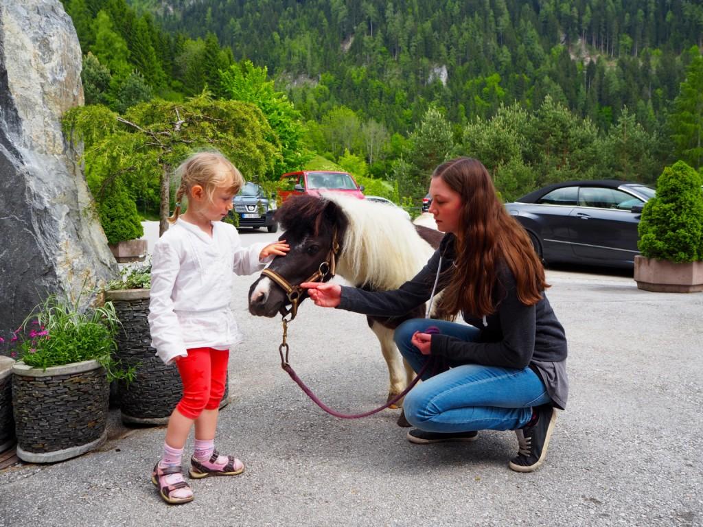 Kinder Pony reisen Naturhotel Hof Gut