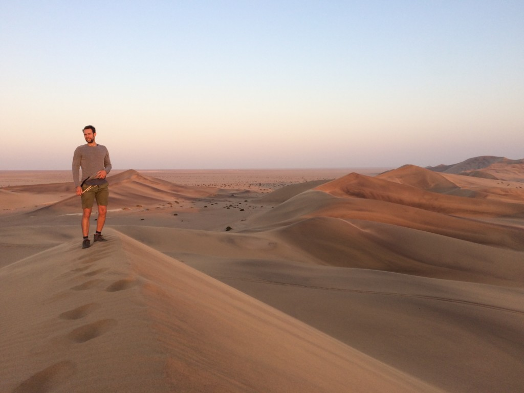 Living desert Swakopmund Namibia Dünen Namib Wüste Spinne Gecko Eidechse Chamäleon