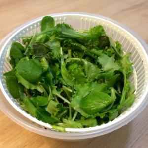 Grüner Salat Salatschleuder