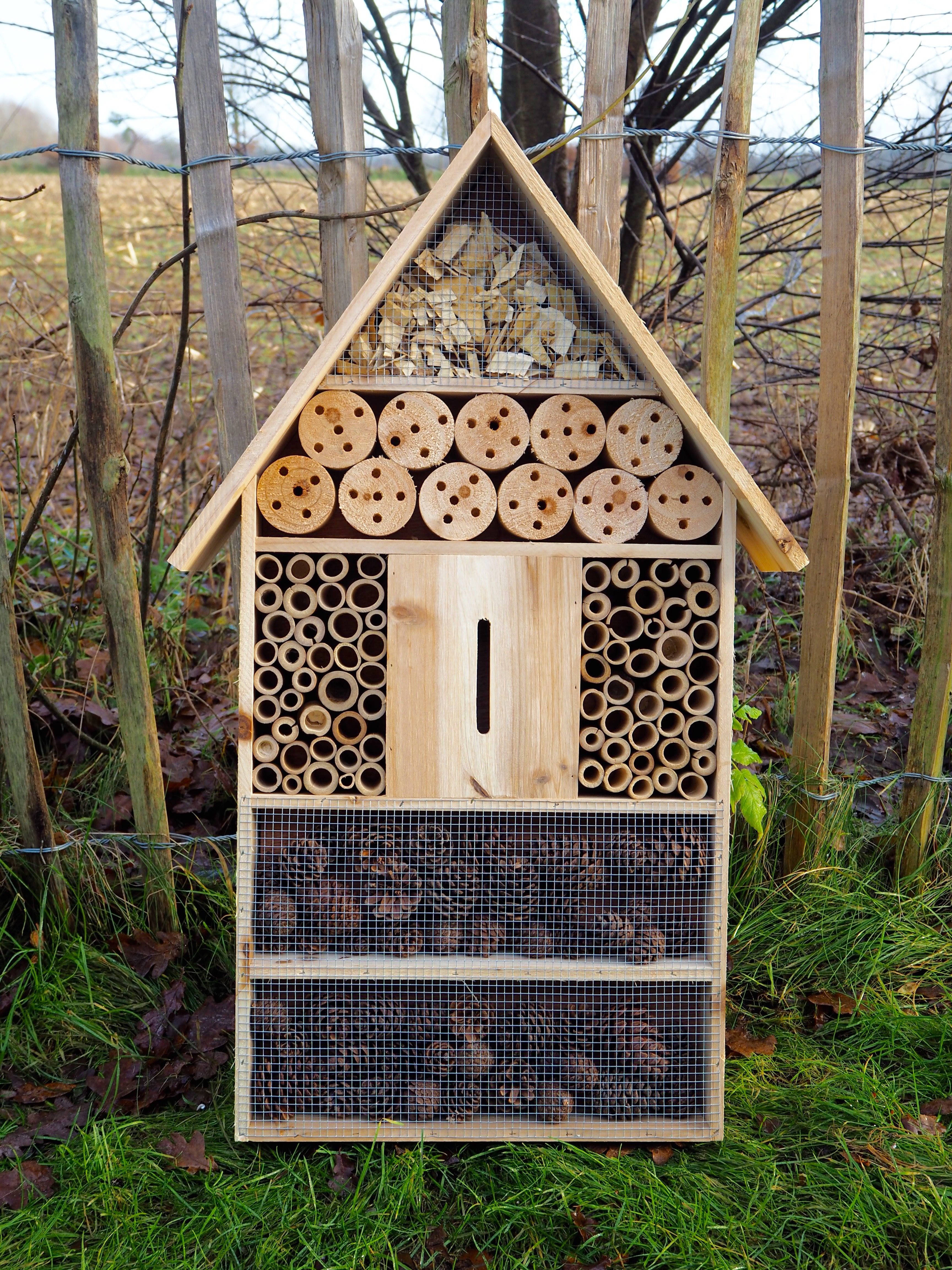Vogelfreundlicher Garten Insektenhotel